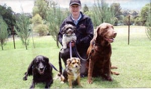 behavioural training, pet dog training classes, healesville