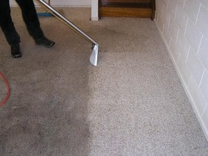 "TrueLocal: Accountable Carpet & Tile Steam Cleaning Image - ""real steam"" makes the difference"