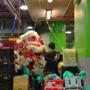 Lion Dance at Paddy's Market during Chinese New Year 2013 celebration.