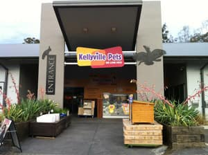 Kellyville Pets :) My favourite pet shop to visit in the whole world :)