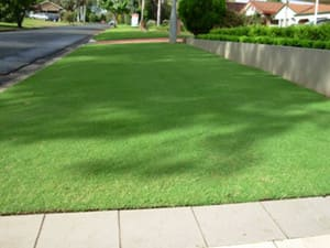 Turf Amp Seed Geelong West Outdoor Home Improvement