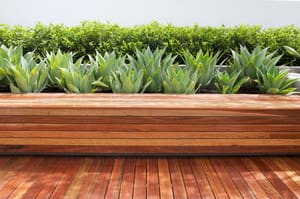 True Local: NS Tree & Gardens Image - decking planting low maintenance