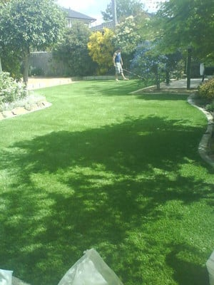 waterless turf, looks and feels the same, green all year round, complete maintenence free lawn.