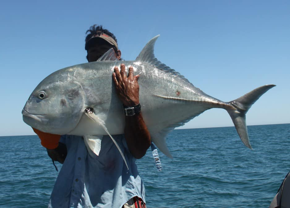 Barraddict Sport Fishing Charters In Broome Wa Fishing