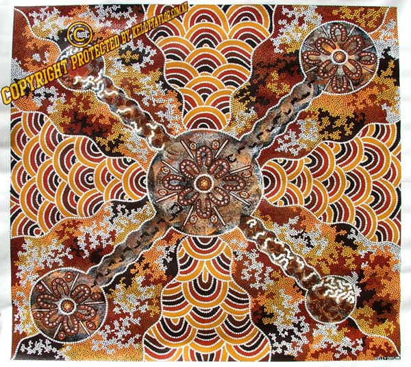 Australian Native Shade Plants: Australian Aboriginal Artists