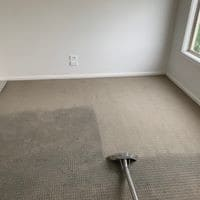 Accountable Carpet Cleaning Pic 1