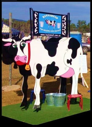 Buck a Bull Western Party Hire Pic 4 - BUTTERCUP THE MILKING COW CONTEST