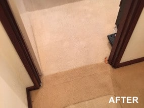 Brilliance Carpet Cleaning Perth Pic 4