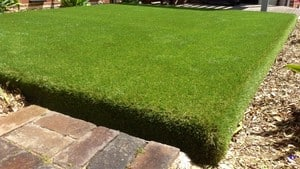 Australian Artificial Lawns Pic 5 - We Can Install Synthetic Grass Anywhere