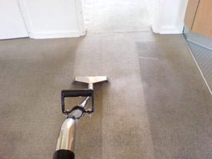 Accountable Carpet & Tile Steam Cleaning. Pic 3 - Noticeable difference every time