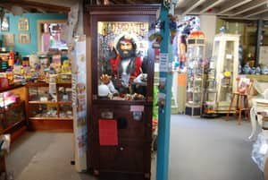 Antique Emporium Pic 3 - Fortune Telling Pirate