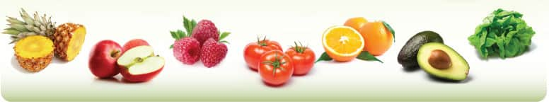Wilsons Fruit & Vegetable Pty Ltd Pic 1