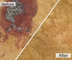 KP's Carpet Cleaning Sydney Pic 4 - Carpet cleaning Before After