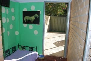 Beenleigh Pet Motel Pic 4 - Deluxe air conditioned rooms private courtyards and a TV for home type accommodation
