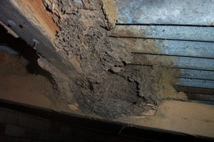 Childs Property Inspections Pic 3