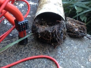 Impeccable Plumbing Pic 3 - Section of blocked and broken storm water line at a customers house in Balgowlah