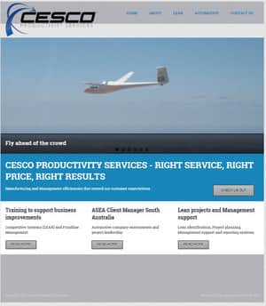 Website500 Pic 2 - CESCO PRODUCTIVITY SERVICES