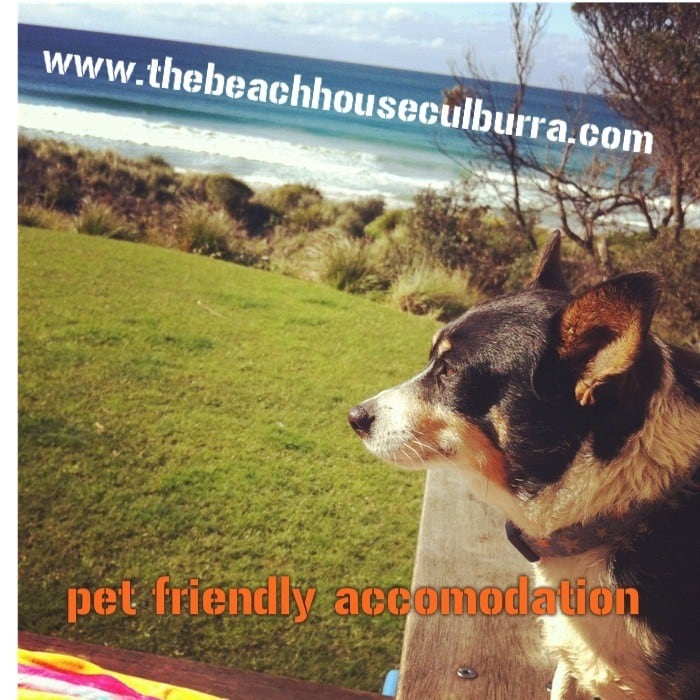 The Beach House Culburra Pic 1 - wwwthebeachhouseculburracom