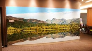 Terrace Eye Centre Pic 4 - The huge stunning photo on the wall in the reception area level 7 Apparently Dr Beckinsale took this photo in England in the Lakes District Its gorgeous