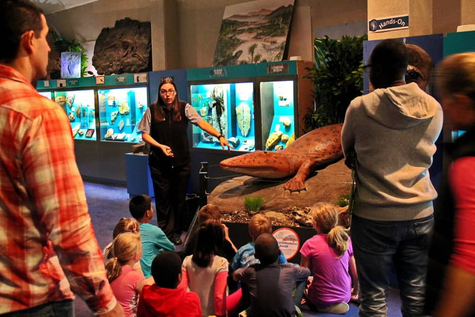 National Dinosaur Museum Pic 1 - Guided tours on weekends and during school holidays