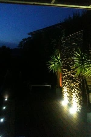 Dalman Electrical Services Pty Ltd Pic 3 - Outdoor Lighting