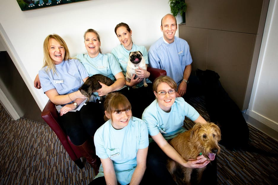 Carlton Veterinary Clinic Pic 1 - Carlton Veterinary Team