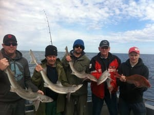 Gone Fishing Charters Pic 3 - Great trip with a few nice gummys and snapper