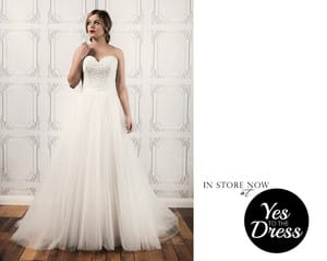 Yes To The Dress Pic 2 - Peter Trends