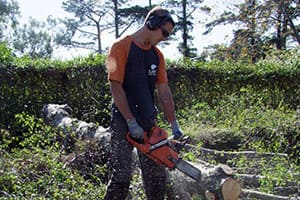 Treelife Tree Removal Pic 2 - Troy owner of Treelife cuts up tree for disposal