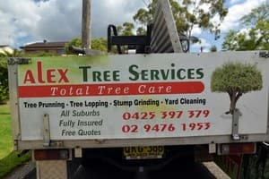 Alex Tree Services Pic 2