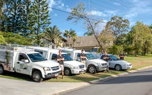 Pest Guru Pic 2 - Pest Control Gold Coast Pest Guru Team