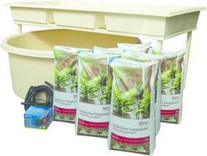 Aquaponics WA Pic 2 - Aquaponics Family Kit