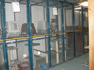 Covaine Boarding Kennels & Cattery Pic 2 - Inside pens of cattery with cat flap to outside pens