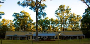Inn The Tuarts Guest Lodge Pic 3 - Surrounded by tall Tuarts trees and nature