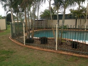Piranha Fencing Pty Ltd Pic 3 - Loop spear aluminium pool fencing in two colours as requested by client