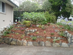 Colin Green's Landscaping Services Pic 4 - Garden Renovation in Collaroy Plateau