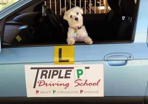 Triple P Driving School Pic 5
