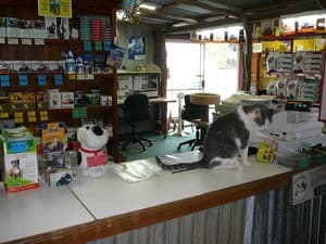 Acacia Pet Supplies & Produce Pic 3 - Flea treatments wormers