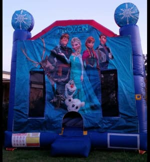 Tamworth Jumping Castles Pic 2 - Frozen